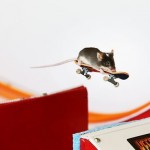 Skateboarding mouse flies through the air