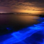 Bioluminescence in the ocean water at night