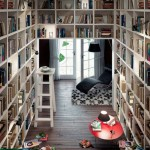 Wonderful home library
