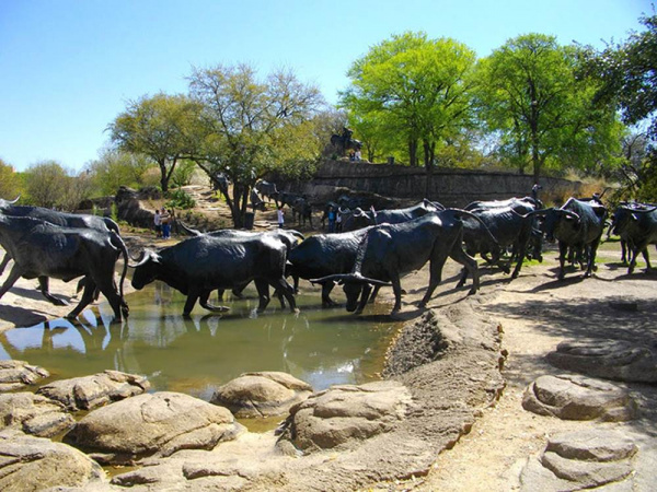 Cattle Drive - by  Robert Summers (Dallas, Texas)