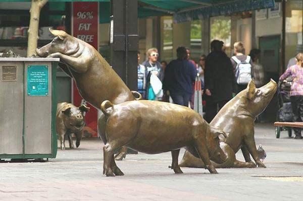 Rundle Mall Pigs - by Marguerite Derricourt (Adelaide, Australia)