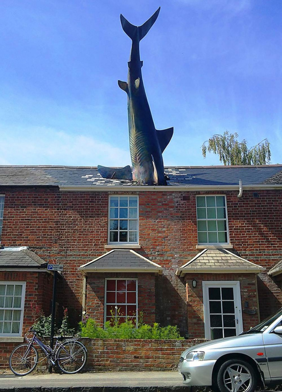 The Headington Shark - by John Buckley (Oxford, UK)